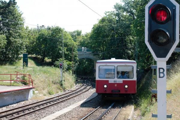 Budapest Cog Railway entering Széchenyi-hegy station